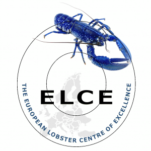 European Lobster Centre of Excellence